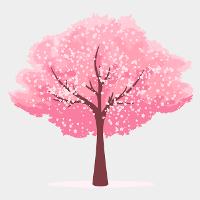 Cherry - tree