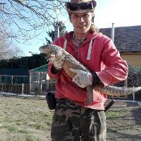 Frenklin Park Teknősotthon