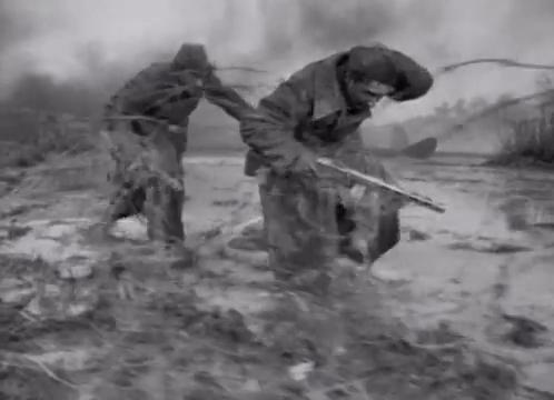 Szállnak a darvak 1957