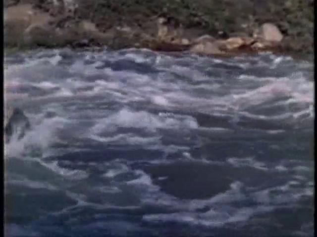 Északnyugati átjáró (1940).avi