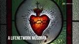 A szívünk titkai