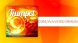 Dj Hlásznyik vs WaveRider-Trumpet (DubShaker)