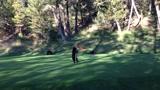 Mackó a golfpályán