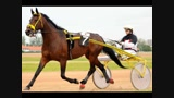 Poruben Tímea (A lovak szerelmese)