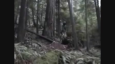 Akik csizmaban haltak meg.avi.avi, akik Videa